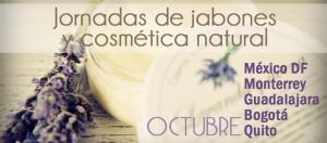 México DF y Monterrey cursos en octubre de 2014