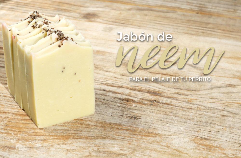 Protegido: Jabón maravilloso de neem